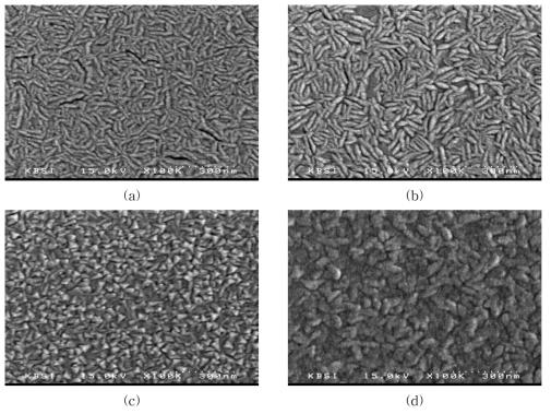 산소분압에 따른 MEMS Silicon 박막의 SEM 사진