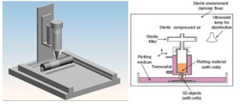 3D 바이오프린팅 시스템