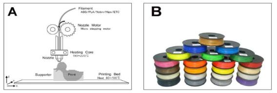 (A) 3D 프린터 구동 원리, (B) 열가소성 생체적합 고분자 재료
