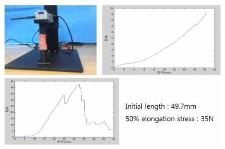 중대동물, 개를 이용한 기관 물성 측정 (Elongation-Axial)