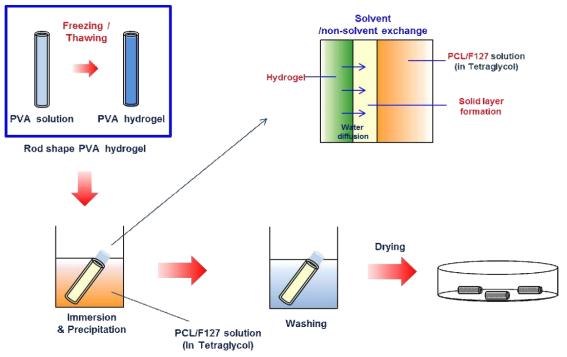 함침/침전법에 의한 미세다공성 기관재생 유도관의 제조과정