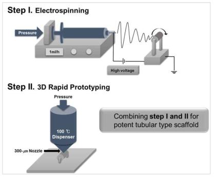 전기방사법과 3D 프린팅 기법을 이용한 하이브리드 도관형 지지체의 개발