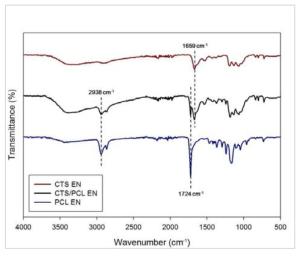 FT-IR을 통한 도관형 나노섬유 구조체 표면의 분자구조 분석