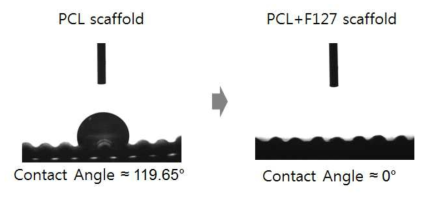 PCL 스캐폴드와 PCL+F127 스캐폴드의 접촉각 측정