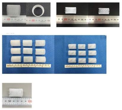 3D printing을 이용한 다양한 형태의 도관 제작(중대동물용)