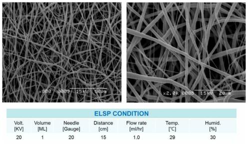 전기방사법을 이용해 제작된 PCL 유도막 및 전기방사 조건