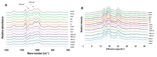 발아곡류로부터 추출한 전분의 FT-IR spectrum (A)과 X-ray diffractogram (B)