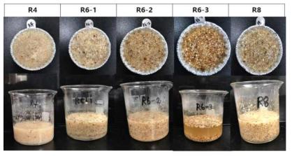 초기 열처리 이유식의 외관 (R4, R6-1, R6-2, R6-3, R8)