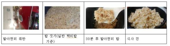 발아현미 (100%) 취반 모습