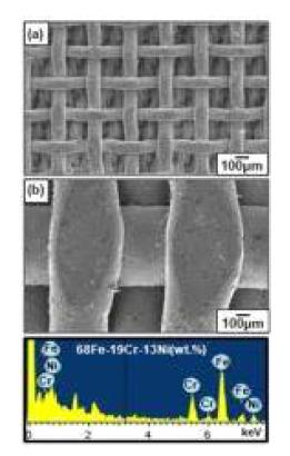 장방출 주사현미경을 활용한 EDS 분석의 예시