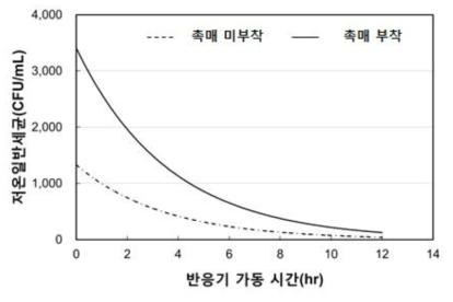 촉매 부착 유/무에 따른 저온일반세균 분석 결과
