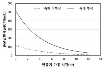촉매 부착 유/무에 따른 중온일반세균 분석 결과