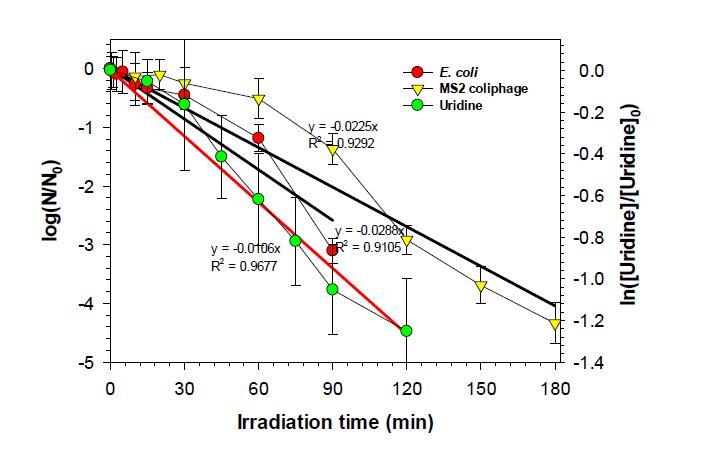 광촉매를 활용한 무약품 소독장치의 화학적/생물학적 소독능 평가 [E. coli]0 = 105 CFU/mL; [MS2 coliphage]0 = 106 PFU/mL; [Uridine] = 10 μM