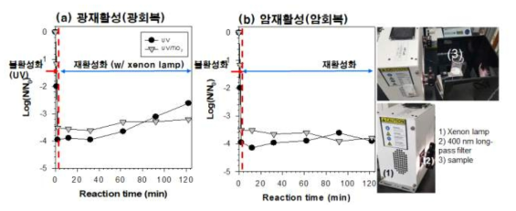 소독 후 미생물 회복 여부 확인 [E. coli]0 = 107 CFU/mL; [MS2 coliphage]0 = 107 PFU/mL;