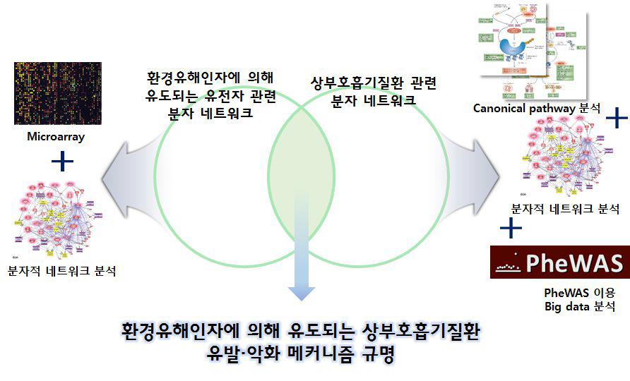 환경 유해인자 유발 상부호흡질환 연구 체계
