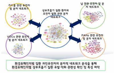 환경유해인자별 상부호흡기 질환 과민유전자의 분자적 네트워크 분석을 위한 모식도