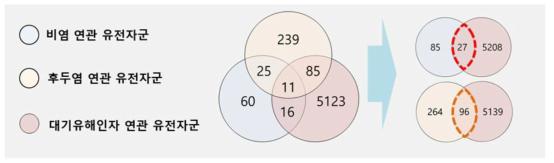 대기 중 유해인자와 상부호흡기 질환 비염, 후두염 간 공통 연관 유전자 수에 대한 벤다이어그램