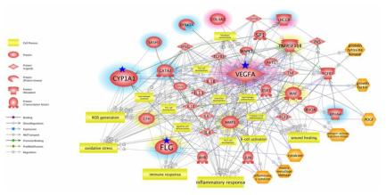 대기 중 유해인자 노출에 따른 상부호흡기 코 질환 유발·악화 연관 독성 네트워크 분석 결과 (각 질환 별 연관 빈도 표시)