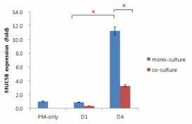 PM 처리 및 PL-MSC 공배양에 따른 HMEEC에서의 MUC5B 발현 변화