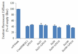 디젤입자 및 LPS 처리시 HMEEC tight junction의 투과율 변화