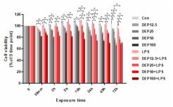 시간 및 농도별 DEP 혹은 DEP+LPS 공처리시 일차 인체 비강상피세포의 생존능력의 변화