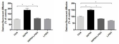 ALI 12일에서 DEP 및 LPS 처리시 비강상피 세포사이 투과율의 변화