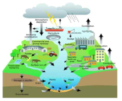The source of pollution in aqua-system (Reference: Aertebjerg et al., 2010)