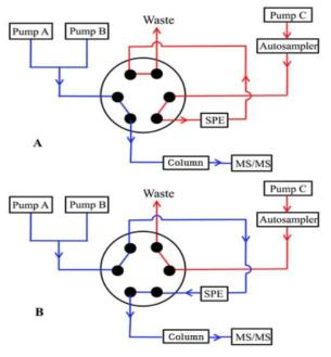 온라인 SPE를 이용한 sameple의 분석 모형도