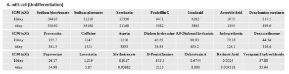 mES cell 약물 노출일수 10일과 4일 비교