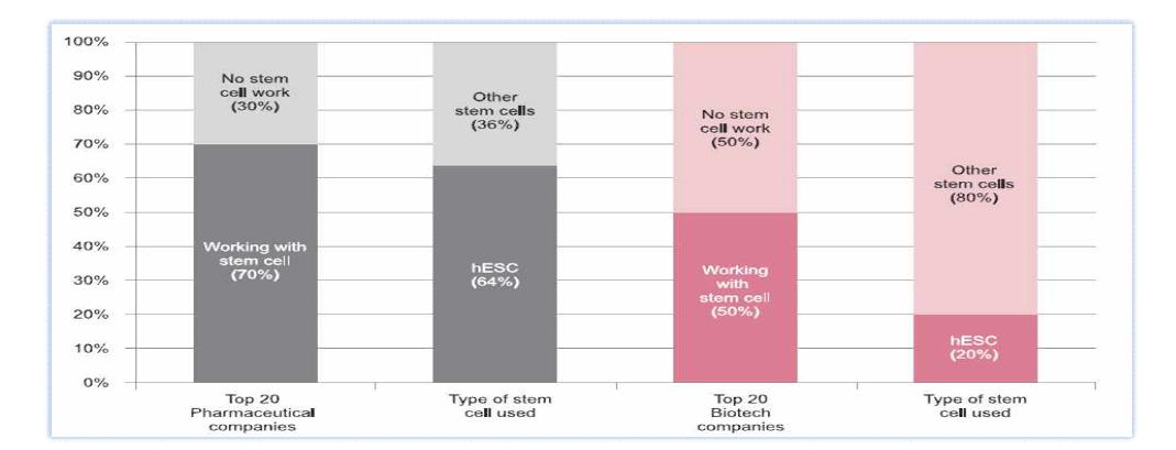 대형 제약사와 Biotech사에서 줄기세포를 이용한 의약품 탐색 (Jensen J. 2009)