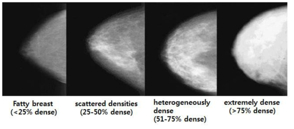 SR Cummings et al. (2009) Prevention of breast cancer in postmenopausal women:approaches to estimating and reducing risk