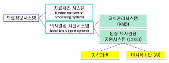 의료정보시스템과 의사결정지원시스템의 분류