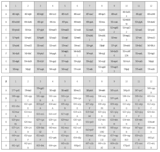 선별된 200개 유전자