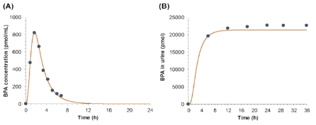 Comparison of PBPK modeling-based estimates (solid line) and measured figures (dotted) following DEHP oral exposure (5 mg/kg): BPA levels in (A) blood and (B) urine