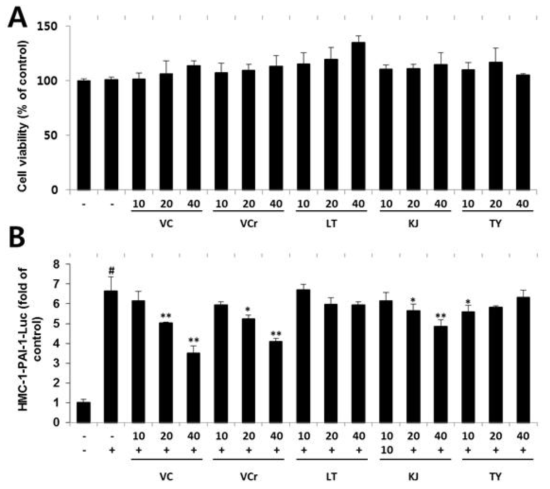 Cell viability and promoter activity on human PAI-1 gene of crude extracts of five Korean mistletoe. (A) Effect of the crude extract on cell viability. HMC-1 cells were incubated in the presence or absence of 0?40 mg/mL of crude extract, and cell viability was determined using the MTT assay. The data are the mean±SD of three independent experiments. *Significant difference from control (*, p < 0.05, **, p < 0.01, ***, p < 0.001). (B) The HMC-1-pPAI-1-luc cells were pretreated with phytochemicals for 2 h, then stimulated with 0.02 μM of PMA plus 0.5 μM of A23187 in the culture medium for the indicated time. The measurement of luciferase activity was performed 8 h after the stimulation of PMA and A23187. Relative promoter activity (measured by relative light units) is given as x-fold induction of the HMC-1-PAI-1-luc cell without stimulation. #Significant difference from basal expression. *Significant difference from PMA and A23187 treatment only (#, p<0.01, *, p<0.05, **, p<0.01)