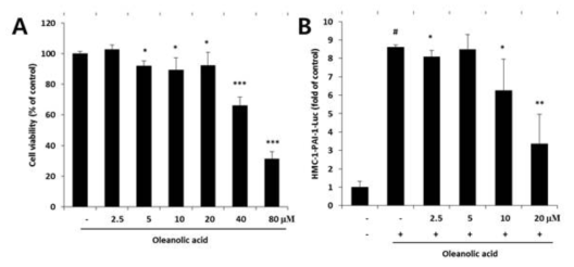 Cell viability and promoter activity of human PAI-1 gene by oleanolic acid. (A) Effect of oleanolic acid on cell viability. HMC-1 cells were incubated in the presence or absence of 0?80 μM of oleanolic acid, and cell viability was determined using the MTT assay. The data are the mean±SD of three independent experiments. *Significant difference from control (*, p < 0.05, **, p < 0.01, ***, p < 0.001). (B) The HMC-1-pPAI-1-luc cells were pretreated with oleanolic acid (0-20 μM) for 2 h and then stimulated with 0.02 μM of PMA plus 0.5 μM of A23187 in the culture medium for indicated time. Luciferase activity was measured 8 h after the stimulation of PMA and A23187. The data are presented as x-fold induction of the test conditions divided by the activity in basal (untreated) condition. Values are mean±SD of triplicate experiments. #Significant difference from basal expression. *Significant difference from PMA and A23187 treated only (#,p<0.01,*,p<0.05,**,p<0.01)