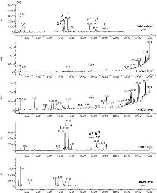 떡쑥 용매분획물의 UPLC-QTOF-MS profiling 결과