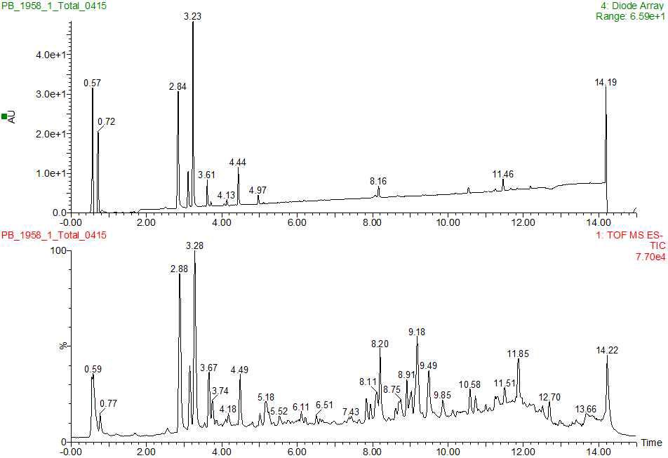개구리밥 추출물의 UPLC-Q-TOF-MS 크로마토그램