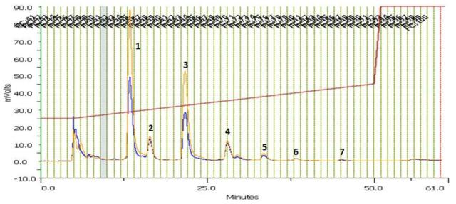 개구리밥 추출물의 perp-HPLC 크로마토그램