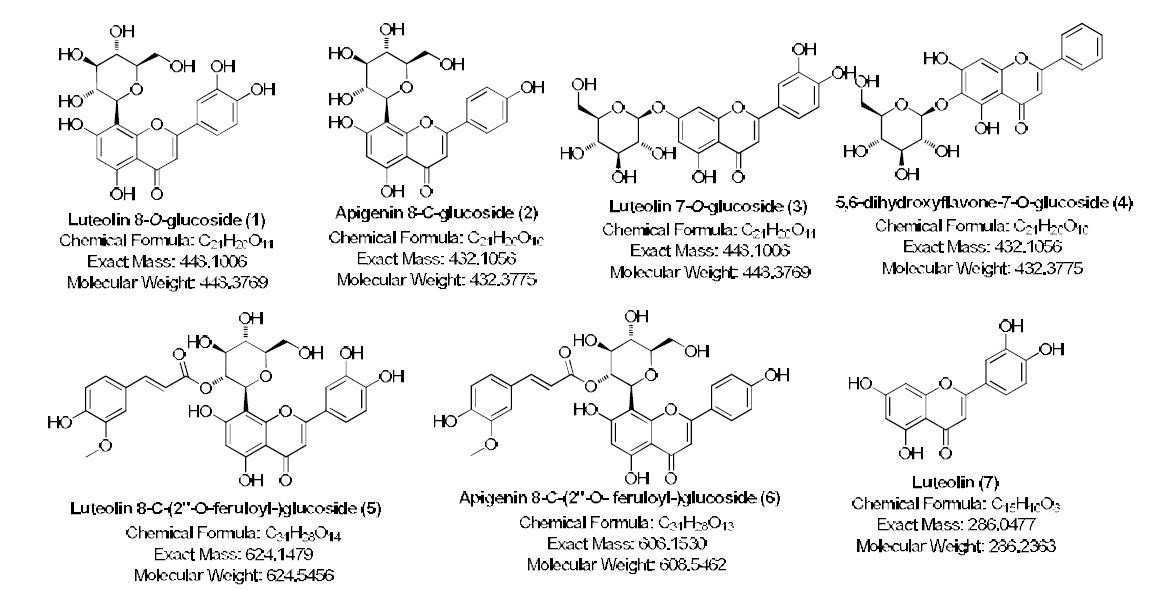 개구리밥으로부터 분리 및 분석된 유효화합물들 7종의 구조