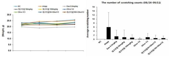 DBA/1 마우스에 개구리밥 추출물 처리 후 몸무게 및 개구리밥 추출물의 소양증 억제 효과