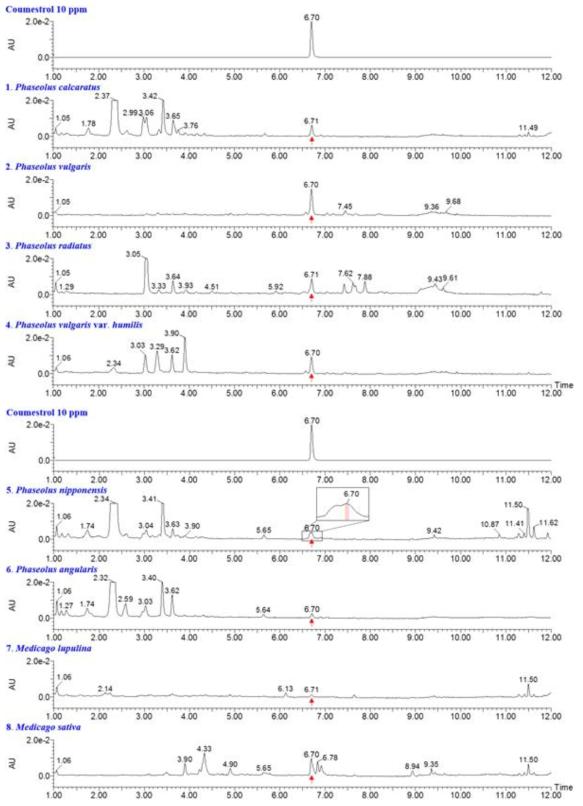 UPLC-QTof-MS를 이용한 콩과소재의 coumestrol 성분 함유확인 결과
