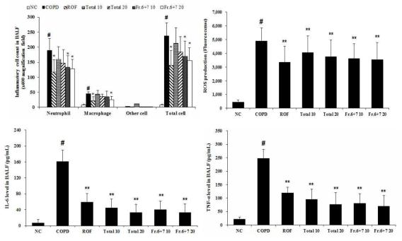 참오동나무 열매 추출물과 분획물은 담배노출로 유발된 만성폐쇄성폐질환 마우스 모델에서 기관지폐포세척액내 염증세포의 침윤, reactive oxygen species (ROS)와 전염증성 cytokine (TNF-α와 IL-6)의 생성억제 효과