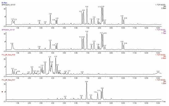 꾸지나무 추출물 및 유효분획물의 UPLC-Q-TOF-MS 크로마토그램