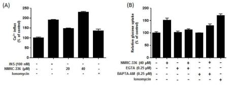 NMRC-336에 의한 세포질 내 칼슘 유입 증가