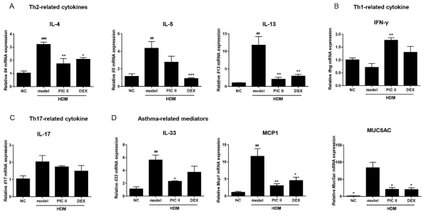 The mRNA levels of (A) Th2-related cytokines, (B) Th1-related cytokine, (C) Th17-related cytokine, and (D) asthma-related mediators, were determined by real-time RT-PCR. The data were normalized toGapdh gene expression. NC; normal control mice treated with saline only, model; HDM-sensitized/challenged mice, PIC II; picroside II (30㎎/㎏) + HDM-sensitized/challenged mice, DEX; dexamethasone + HDM-sensitized/challenged mice. All data are representative of three independent experiments and represented as the mean ± SEM (n=6mice/group). ##p<0.01and###p<0.001, compared with normal control (NC);*p<0.05, **p<0.01, and ***p<0.001, compared with model group