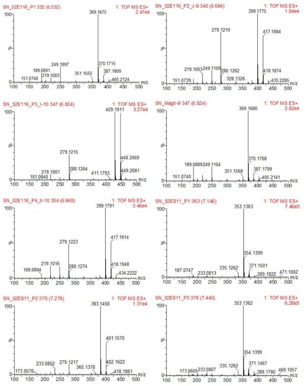 신이로부터 분리된 화합물들 8종 MS 크로마토그램