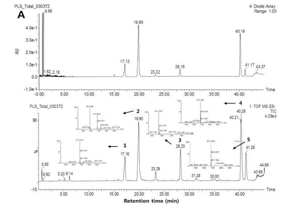 작약종자 추출물 및 용매분획물의 UPLC-Q-TOF 크로마토그램