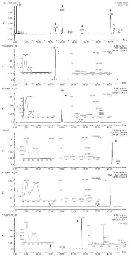 작약 종자 추출물에서 분리된 화합물들 5종의 순도 확인 및 분석결과