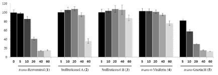 작약 종자에서 분리한 화합물들 5종에 대한 세포독성 결과